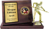 Billboard Plaque - Large Sports and Academic