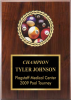 Classic Insert Plaque Sports and Academic Plaques