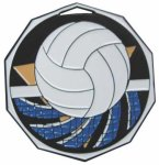 Volleyball Decagon Colored Medallions