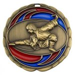 Martial Arts  Karate/Martial Arts Medallions