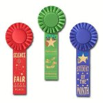 Scholastic Rosette Award Ribbon Karate Trophy Awards