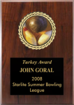 Valurite Insert Plaque Sports and Academic Plaques