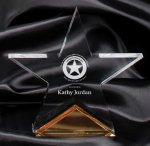Gold Spectra Star Award Star Awards
