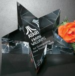 Slanted Star Paper Weight Star Awards